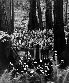 An audience gathered in John Muir Woods
